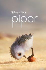 Piper 2016