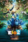 Rio 2 2014