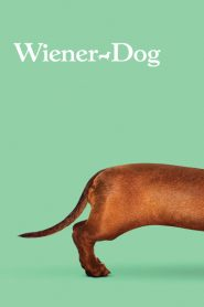 Wiener-Dog 2016