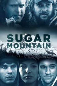 Sugar Mountain 2016