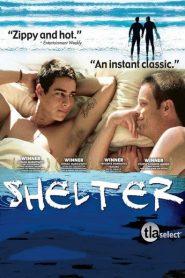 Shelter 2007