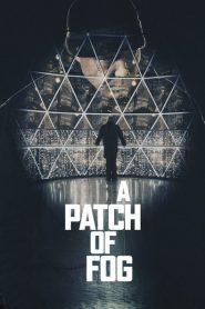 A Patch of Fog 2015