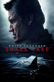 Shark Lake 2015