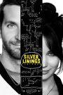 Silver Linings Playbook 2012