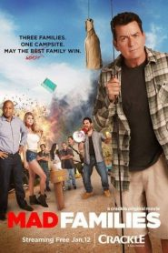 Mad Families 2017