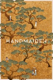 The Handmaiden 2016