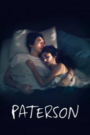 Paterson 2016