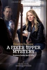 Concrete Evidence: A Fixer Upper Mystery 2017