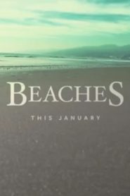 Beaches 2017