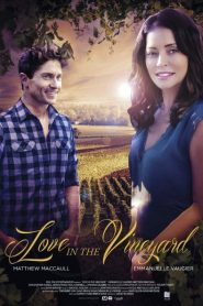 Love in the Vineyard 2016