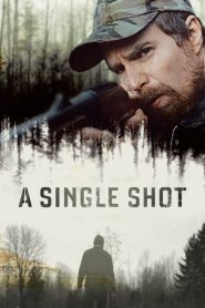 A Single Shot 2013
