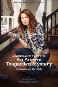 A Bundle of Trouble: An Aurora Teagarden Mystery 2017
