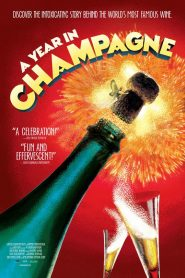 A Year in Champagne 2014