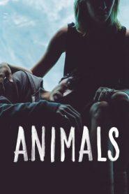Animals 2014