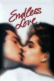Endless Love 1981