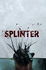 Splinter 2008
