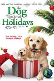 The Dog Who Saved the Holidays